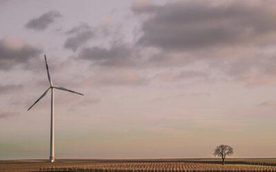 LIFE – Förderung für europäische NRO im Umwelt- und Klimaschutz